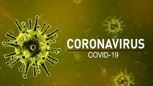 Travel ban may be introduced to stop the spread of the coronavirus in South Africa