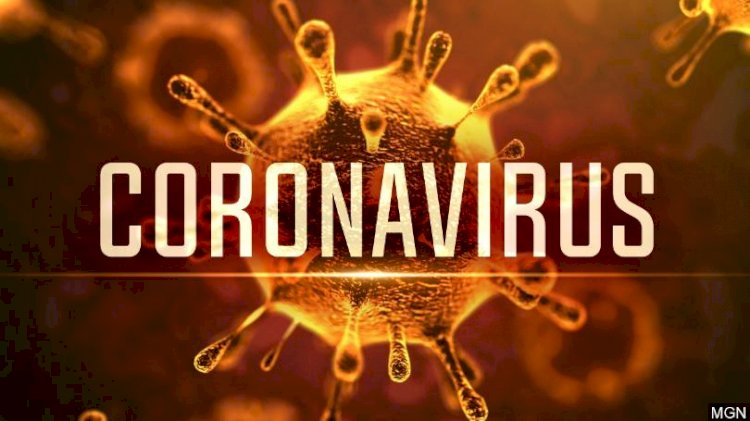 People infected with the coronavirus in South Africa and where they live