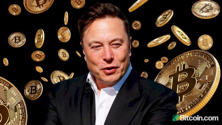 Musk Defends Tesla Bitcoin Move, Says Token Less Dumb Than Cash